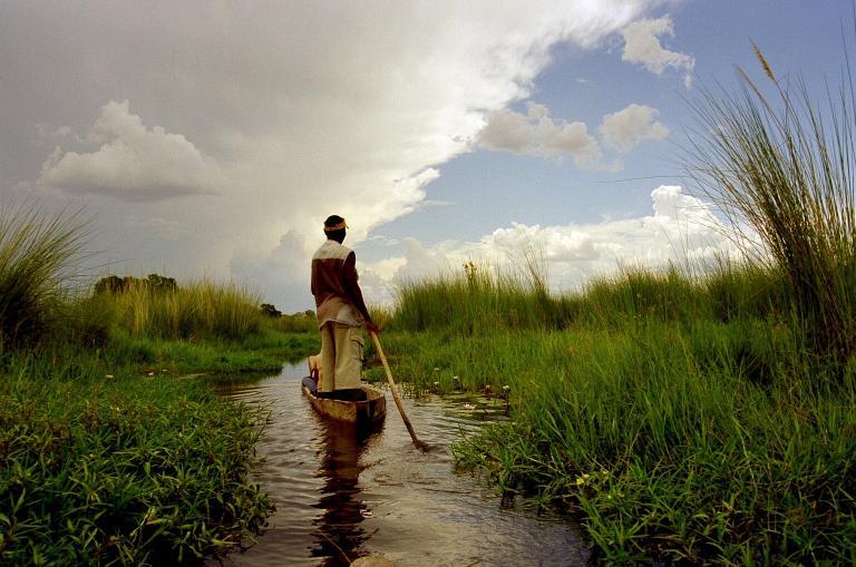 Botswana Safaris & Reisen: Im Boot durch das Okavango Delta fahren und auf einer Botswana Reise die einmalige Tierwelt erleben