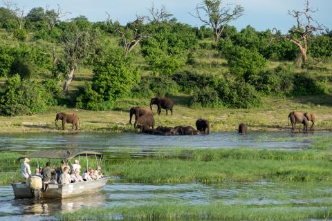 Bootstour Chobe Nationalpark