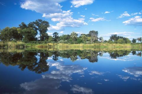 Mokorokor Fahrt im Okavango Delta, dem größten Süßwasser Delta der Welt.