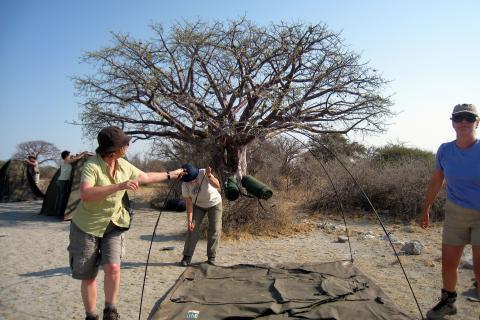 Zeltaufbau auf der Camping Safari mit Sunway durch Botswana