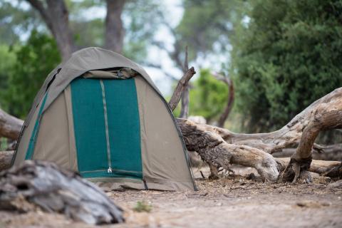 Canvas Zelt während der Botswana Zeltsafari