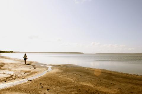 Cape Algula