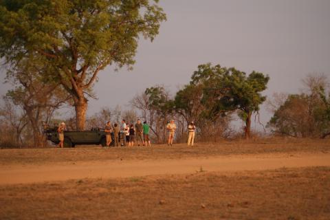 Krüger National Park Game Drive