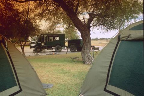 Drifters Maun Camp: Safarizelte und Safari Truck im Hintergrund