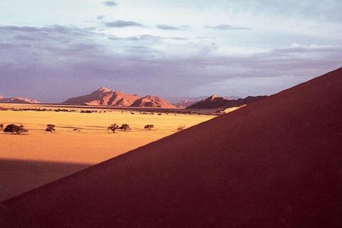 Dünen in der Namib Wüste nahe der Stadt Aus in Namibia