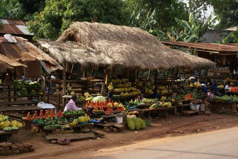 Frucht und Gemüsemarkt in Entebe