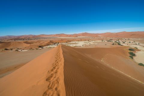 Dünen in der Namib Wüste