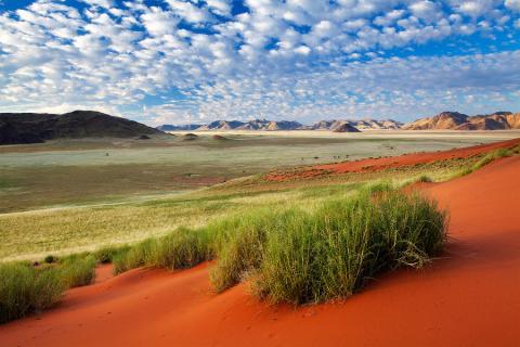Panorama der Namib Wüste in Namibia mit rotem Sand und Bergen am Horizont