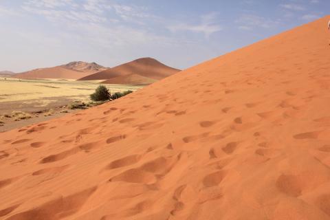 Sanddüne in der Namib Wüste