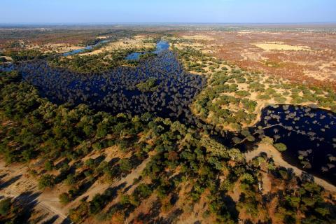 Panorama des Okavango Delta aus der Vogelperspektive / Birds Eye