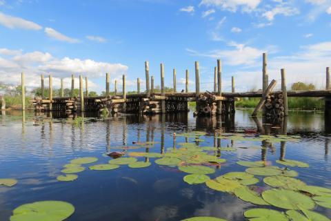 Steg im Okavango Delta Botswana