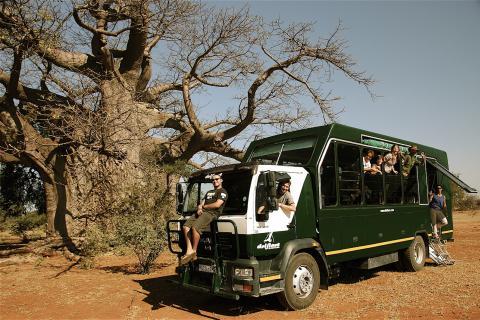 Drifters Adventure Tours Gruppe unter Baobab in Simbabwe