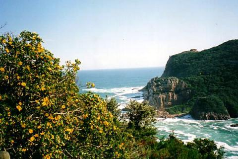 Knysna Heads an der Garden Route