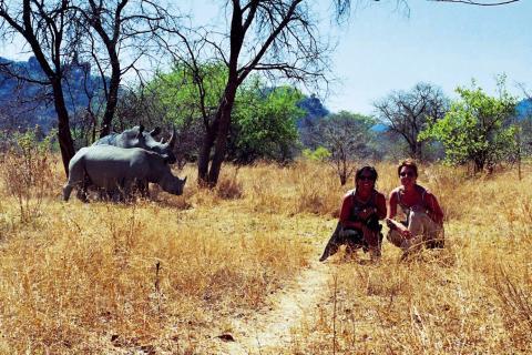 Reisende vor zwei Nashörnern im Zululand