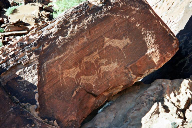 Felsmalereien in Twyfelfontein auf einer Namibia Reise