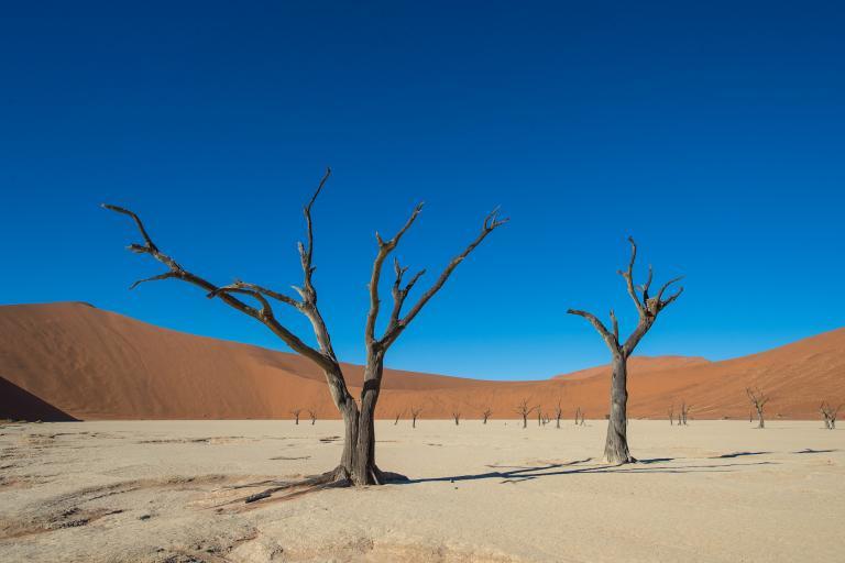 Sossusvlei in der Namib Wüste im Land Namibia