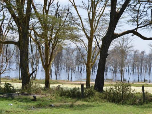 Blick auf den Lake Nakuru in Kenia