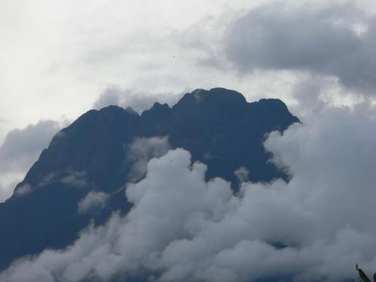 Die Berge liegen noch in Wolken im Bwindi Impenetrable National Park