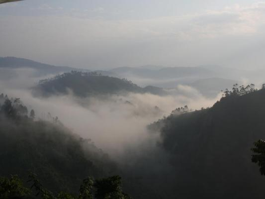 Campingübernacht in der freien Natur Ugandas im Bwindi Impenetrable National Park
