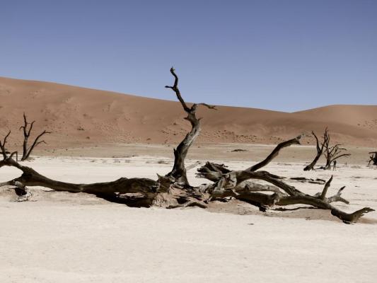 Deadvlei Tonpfanne moit abgestorbenen Akazienbäumen in Namibia