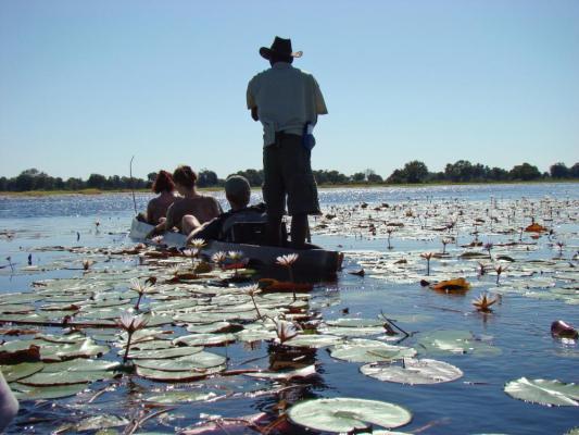 Bootsfahrt auf dem Okavango Fluss im Okavango Delta