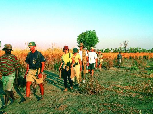 Geführte Walking Safari im Krüger National Park mit Guide - ideal um die Small Five zu entdecken