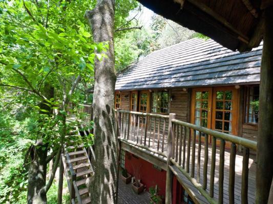 Aussenbereich der Drifters Greenfire Hazyview Lodge