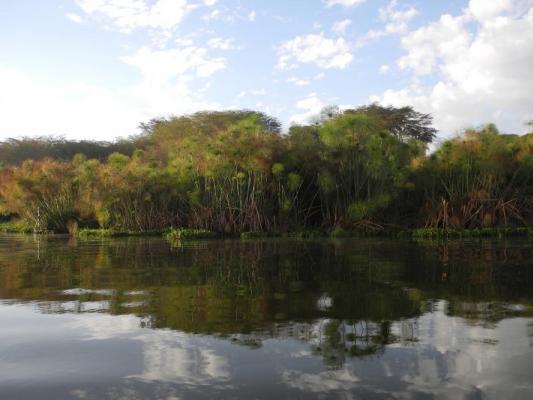 Blick auf das Wasser des Lake Naivasha