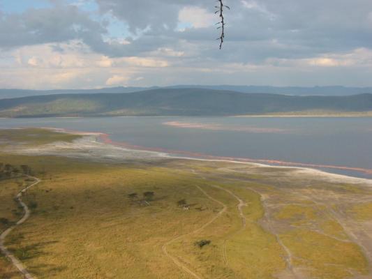 Panorma des kenianischen Lake Nakurus