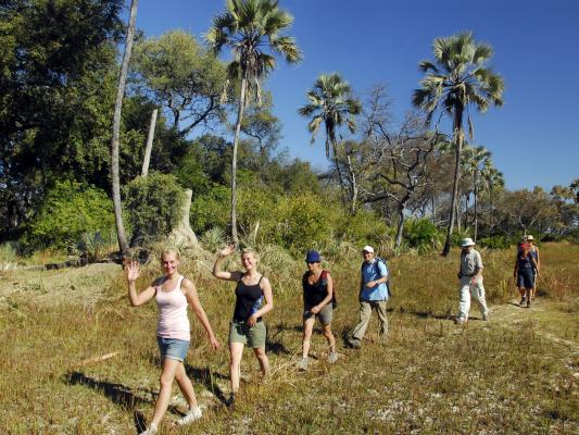 Walking Safari in Botswana: Safari Pirsch zu Fuss