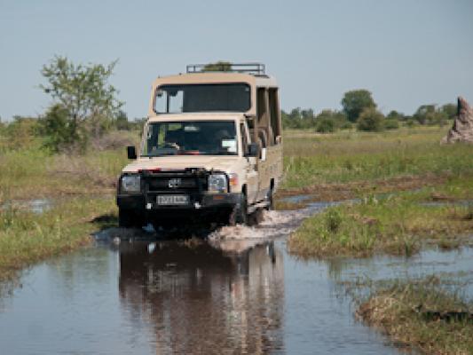 Fahrender Safari Jeep durch Sumpflandschaft