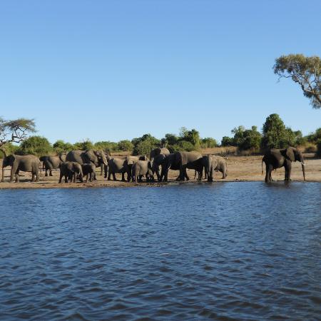 Botswana Camping Safari zu den schönsten Nationalparks