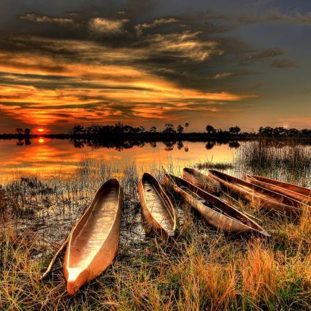 Botswana Safari Tour in die schönsten Nationalparks des Landes und zu den Victoria Fällen. Ein Höhepunkt
