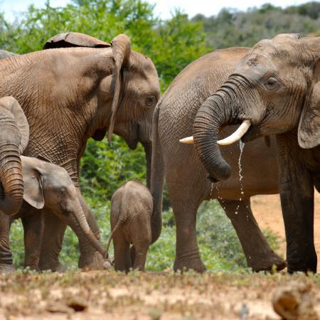 23-tägige Abenteuer Expedition durch Simbabwe