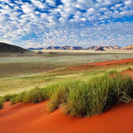 Namibia Lodge Safari - Tour zu den Highlights des Landes